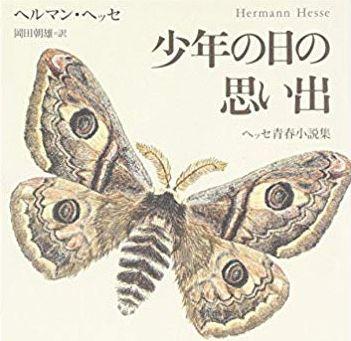 なろう小説「気づいたら虎になってた」「起きたら虫になってた」「思わず虫の標本盗んで潰しちゃった」